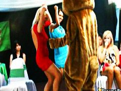 bear, group, on, dance, naked, babes