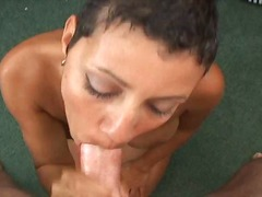 amateur, interracial, blowjob