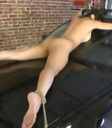 Mika Tan, candi dreamz, pornstars, bdsm, mika tan, asian