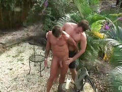 Welcome to paradise! lee and stone are on a desert island and ready to grease up their giant muscles and ho...