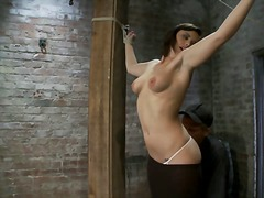 fetish, bondage, humiliation, slave, clamps, nextdoor, shaved