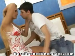 tranny, shemale, barebacking, transsexual