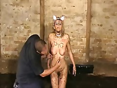 subbed, bizarre, humiliation, extreme, bdsm, slave, domination